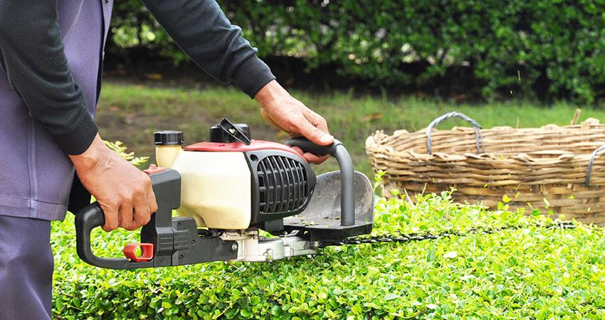 Cholet Services jardinage entreprise